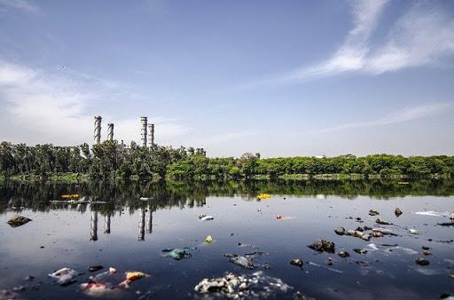 Indemnización por daño ambiental