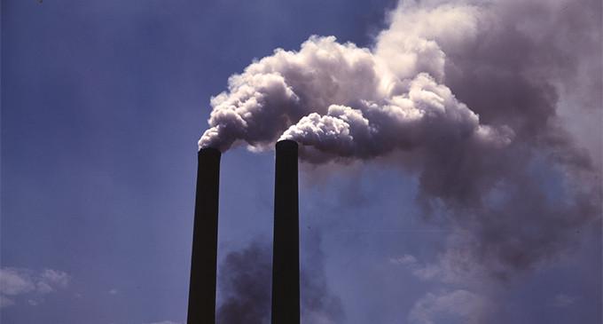 Delitos por daños al Medio Ambiente